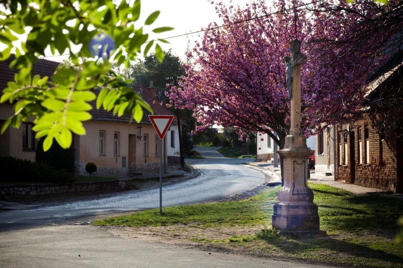 Sobotovice